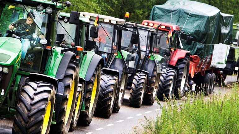 De impact van de stikstof-crisis op de Brabantse natuur